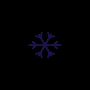 indinature snowflake icon